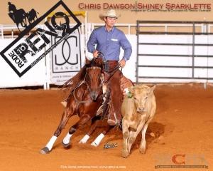 Chris dawson rtr-1
